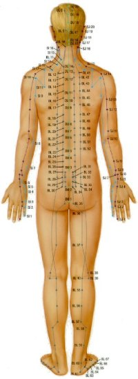 Detailed Information About Acupuncture Body Peace
